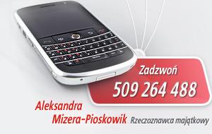 Zadzwoń 509 264 488 | Aleksandra Mizera-Pioskowik. Rzeczoznawca majątkowy